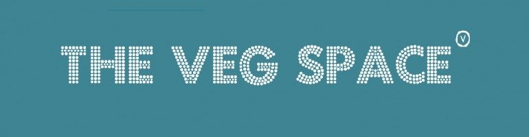 Check out our sister blog for foodies, The Veg Space